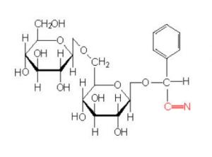 Molécula presente en las almendras amargas