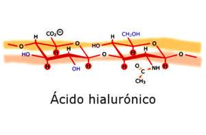 Estructura molecular del hialuronato de sodio