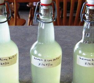 preparacion kefir de agua
