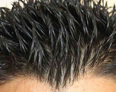 C mo aplicar cera para el pelo lo nunca contado for Aplicar cera de concreto sobre baldosas