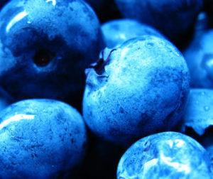 arandanos azules y secos, contraindicaciones