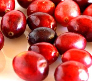 arandanos rojos propiedades