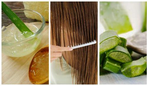 Aloe vera y miel para el cabello